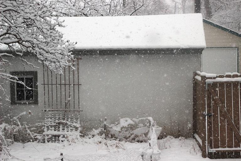 snownami-2